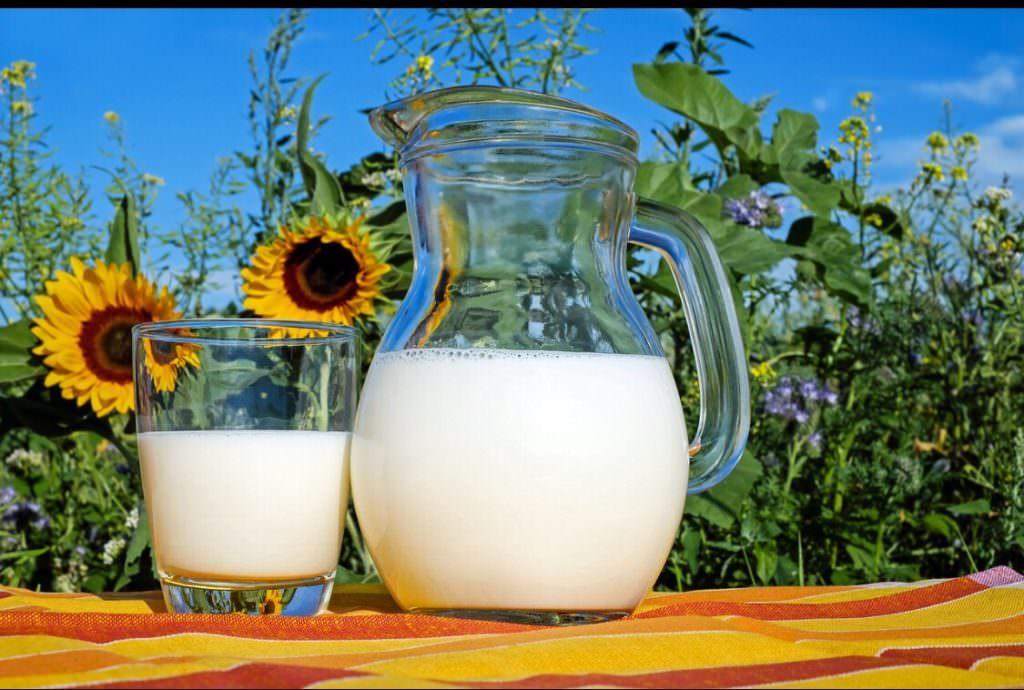 熱中症予防に牛乳が良いらしい