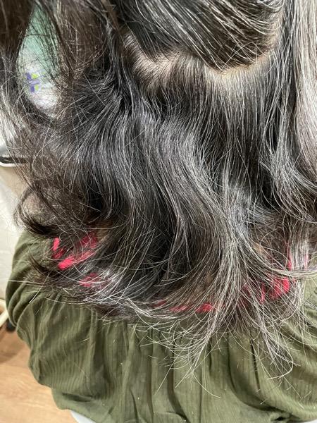 ホームケアで髪の毛は変わる!?オススメのホームケア商品