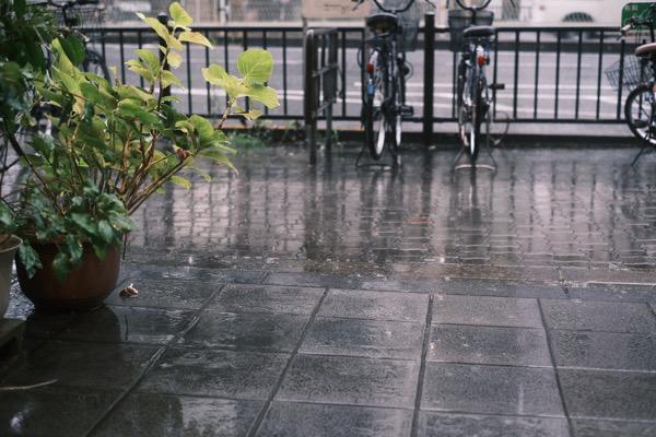 雨なので関東にオッジィオットを配送してみた